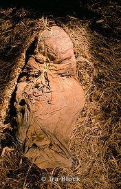 Paracas Fardo, Feathered Mummy