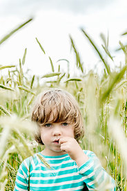 Little Danish girl in grain field