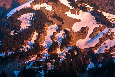 Late light on a slope in Mount Rainier National Park, Washington