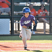05-06-16 BB LL DIX Farm Wildcats v Gators