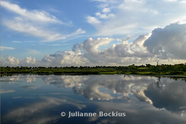 Big Sky Reflection