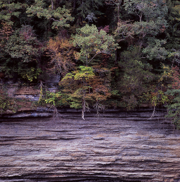 017-Eastern_Landscapes_D145137_Burgess_Falls_Canyon_Detail_01_Preview
