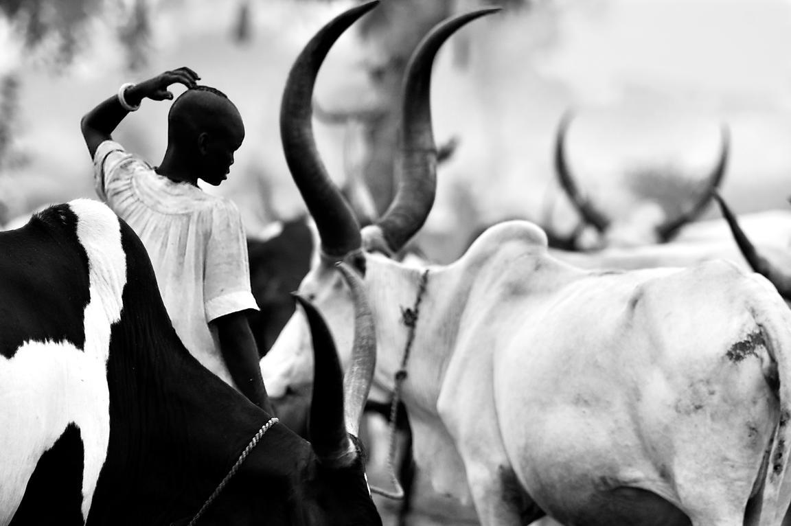 Michael freeman photography dinka cattle camp
