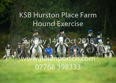 2018-10-14 KSB Hurston Place Farm Hound Exercise