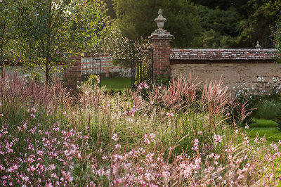 Newly planted beds of Miscanthus sinensis 'Kleine Silberspinne' and Gaura lindheimeri 'Rosyjane'. Heale House, Middle Woodford, Salisbury, Wilts, UK