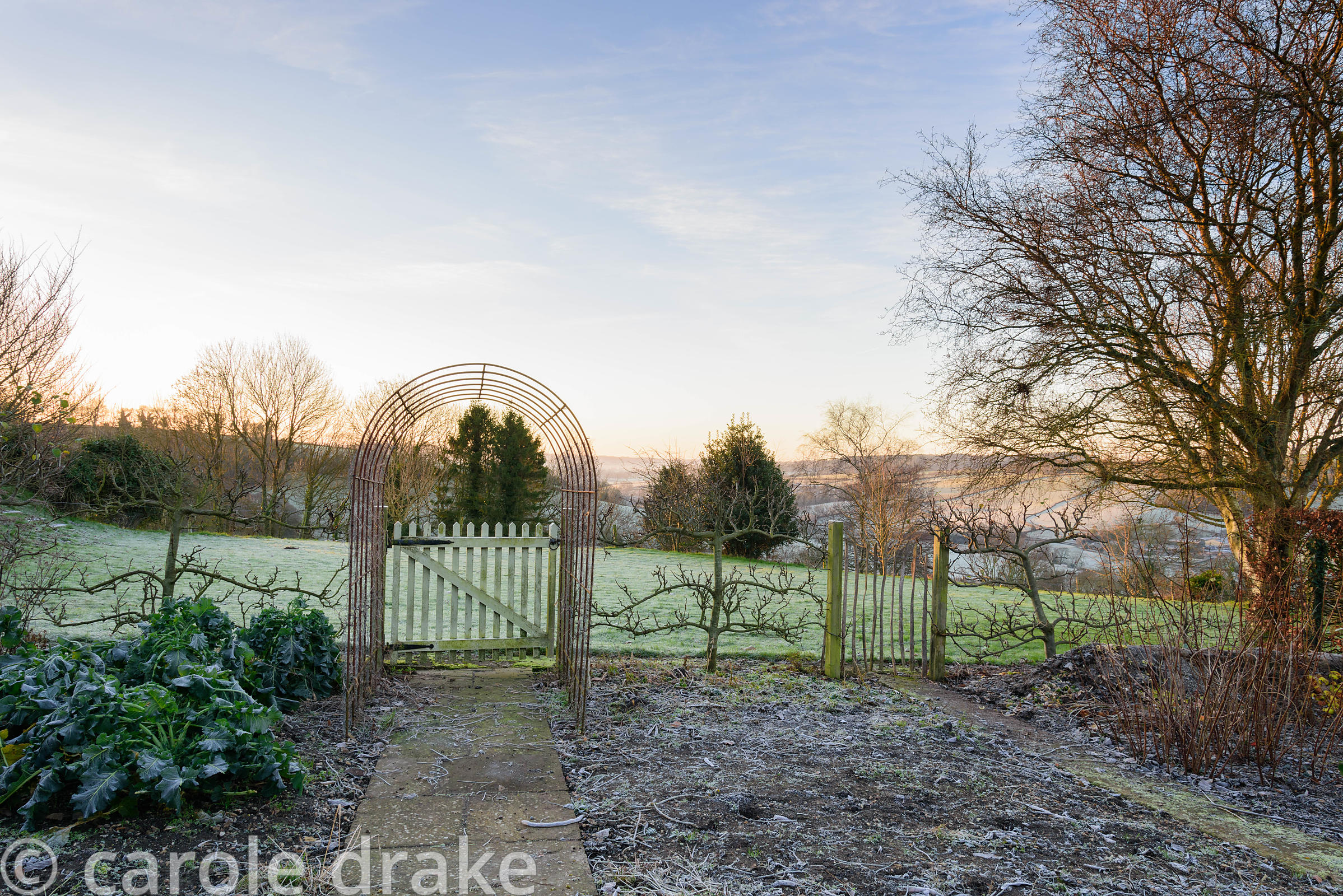Kitchen garden with view across the Devon countryside on a frosty January morning