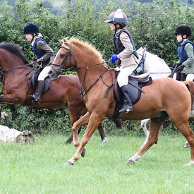 30th August 2013 OBH PC Mock Hunt