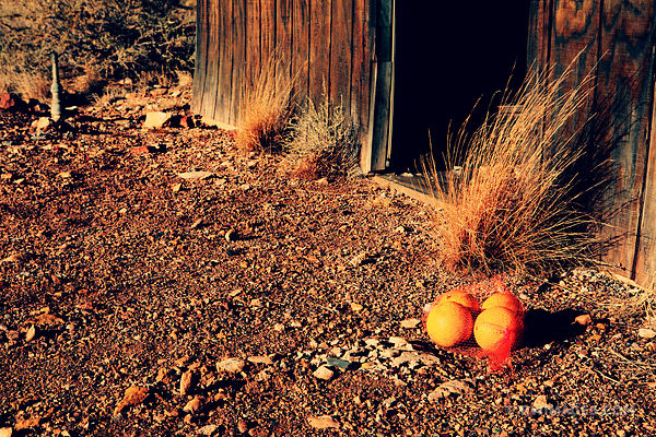 FOUR ORANGES ROUTE 66 TWO GUNS ARIZONA