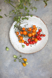 ACutting_tomatoes_2197