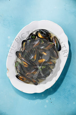 Mussels on white plate on blue background