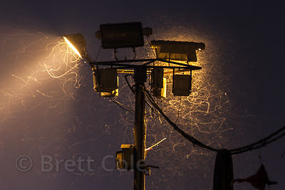 Insects swarm a floodlight along the ghats in Varanasi, India.