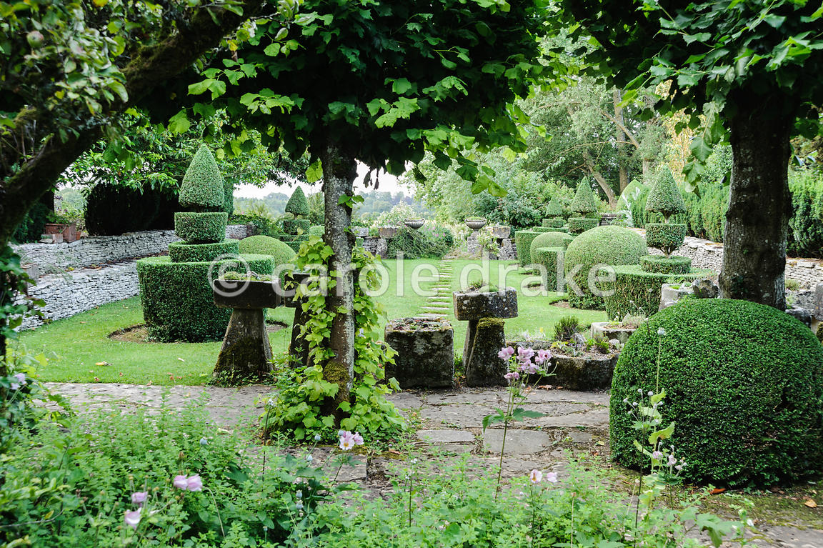 The Winter Garden features pleached limes with pink Japanese anemones below. Beyond is the Troughery and Topiary gardens. Rod...