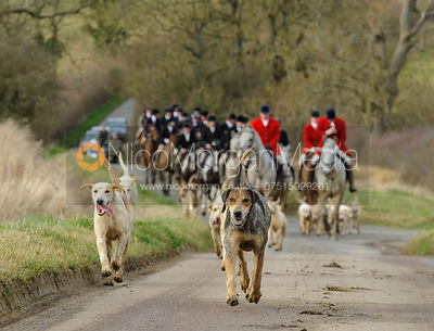 The Cottesmore Hunt at Ladywood Lodge 4/3