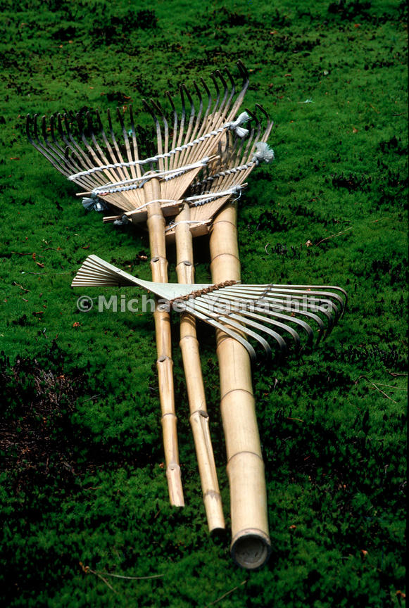 Rakes placed on top of rich green moss