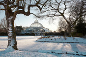 Sefton Park Snow