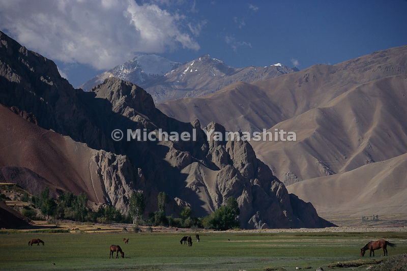 Horses graze freely in the lush meadows in this valley, unaware of the snow-capped Pamir mountains brushing the sky at the border of Afghanistan and Pakistan and China. Over those mountains lay Marco Polo's destination, the fabled empire of China. Wakhan, Badakhshan, Afghanistan