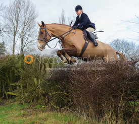 Gems McCormick jumping the first hedge - Barleythorpe