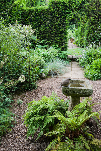 Stone birdbath with ceramic bird surrounded by ferns in the shade garden at Cothay Manor, Somerset