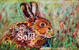 Hare_in_Pastel_copy
