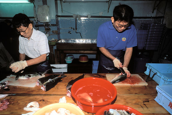 Auctioned fugu, or puffer-fish, are gutted and cleaned in the Japanese port city of Shimonoseki by experts before being deliv...