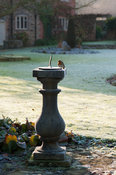 Sundial beside frosty lawn with robin.