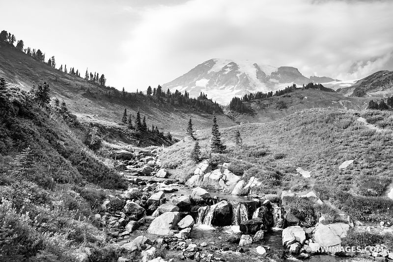 EDITH CREEK ALPINE MEADOW MOUNT RAINIER NATIONAL PARK WASHINGTON BLACK AND WHITE