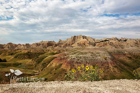 Badlands - A Land of  Contrasts