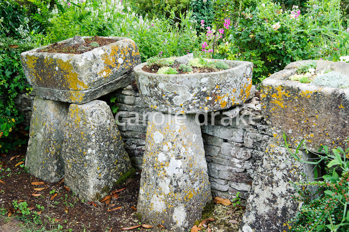 Troughs of alpines arranged along the edge of the Topiary Garden. Rodmarton Manor, Rodmarton, Tetbury, Glos, UK