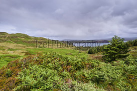 Deforestation around Brandarsaig and Loch Bracadale near Dunvegan on the Isle of Skye, Scotland, UK.
