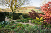 Gravel garden with standard variegated holly, acers, and orange tulips, with fells beyond. Summerdale House, Lupton, Cumbria, UK