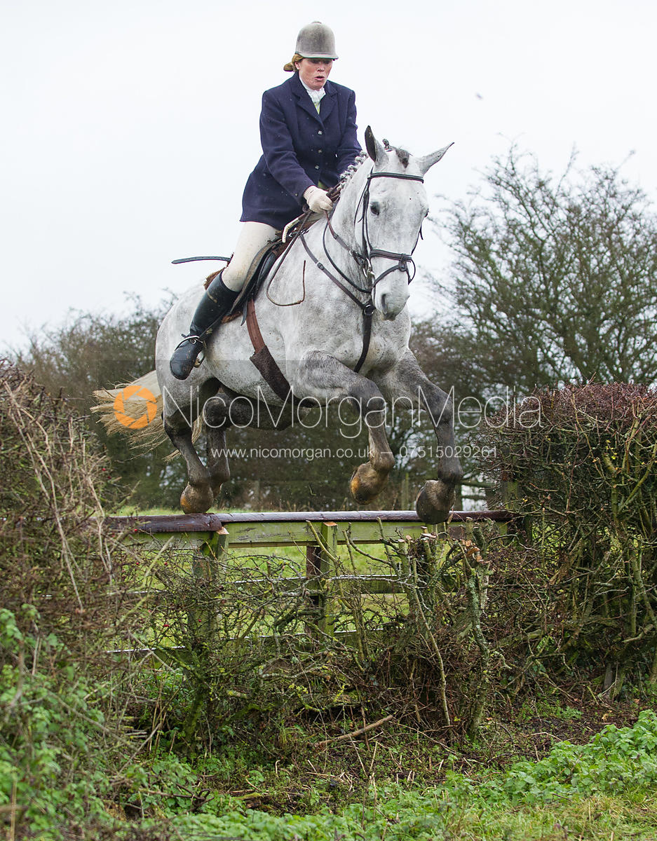 Monica Tebbutt-Wheat jumping near the new Jubilee Covert - Cottesmore Hunt at Deane Bank Farm 4/12/12