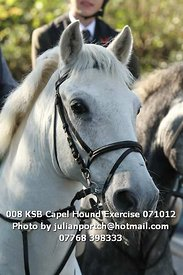 008_KSB_Capel_Hound_Exercise_071012