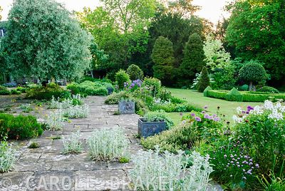 Stone terrace seeded with Alchemilla mollis and silvery stachys, with border of purples and whites and lawn beyond. Old Recto...