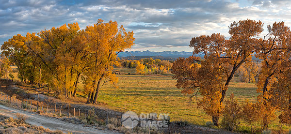 View of Sneffels Range from Uncompahgre Valley