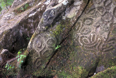 6,000 year-old petroglyphs along Thorsen Creek, Bella Coola Valley, Great Bear Rainforest of British Columbia.