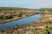 Olifants River, Kruger National Park, South Africa