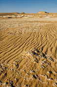 dunes, the Great Sand Sea, Western desert, near Siwa oasis, Egypt