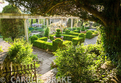 Box parterre on the Great Terrace glimpsed from above. Iford Manor, Bradford-on-Avon, Wiltshire