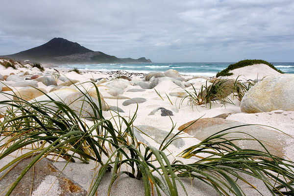 Looking towards Cape Point from the beach at Platboom, Cape Peninsula, South Africa