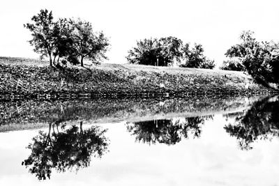 Nature's Rorschach: reflections of the Sacramento Delta, 29th October, 2013