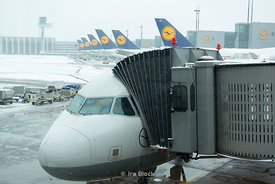 A scene of Lufthansa airlines at Frankfurt airport in Frankfurt, Germany