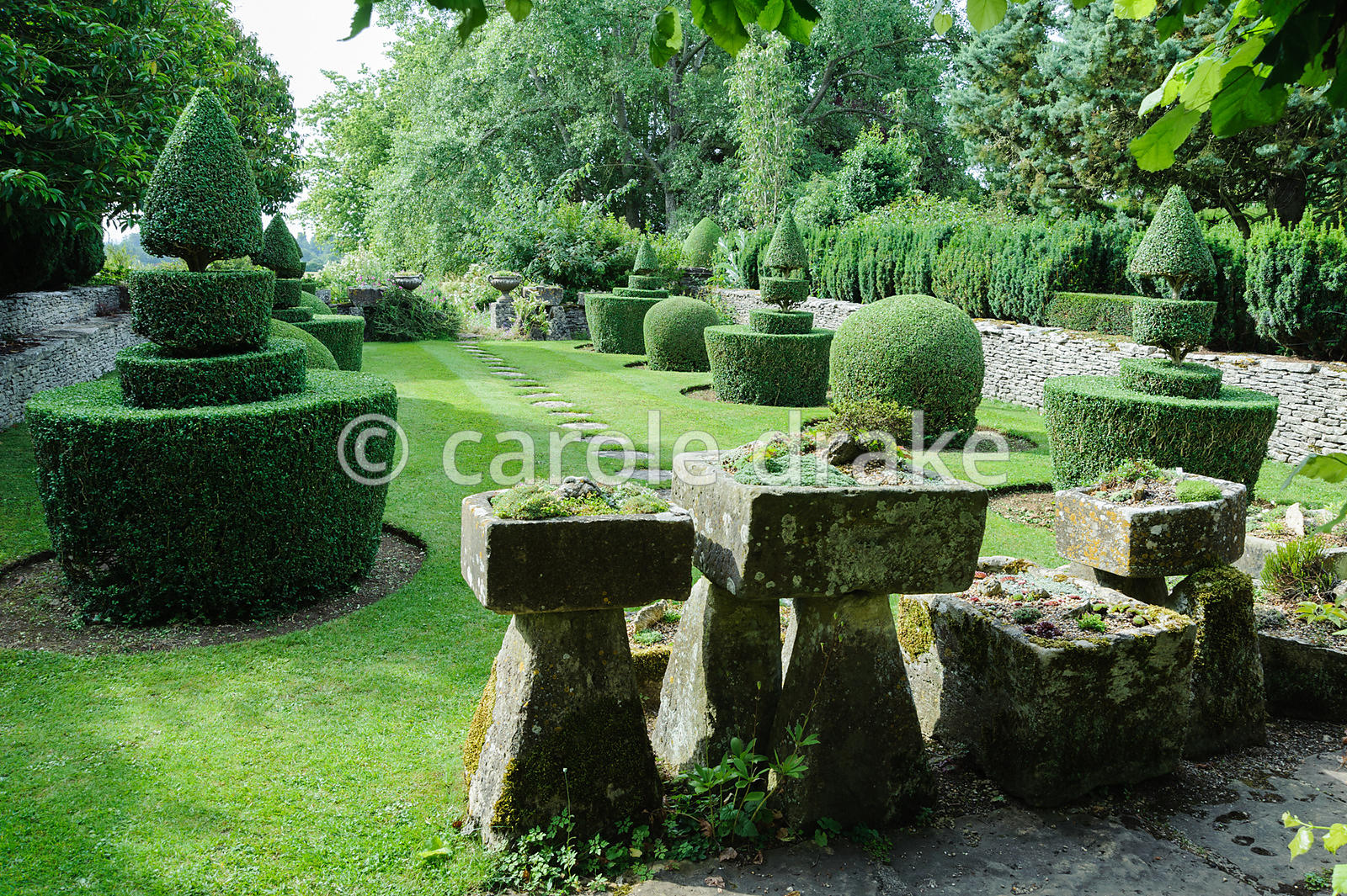 View from the Troughery through to the Topiary garden featuring clipped box. The troughs were previously used around the farm...