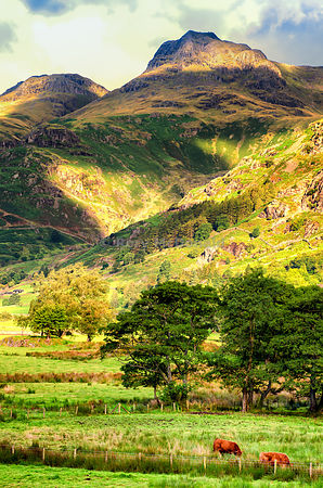 Foot of The Langdales