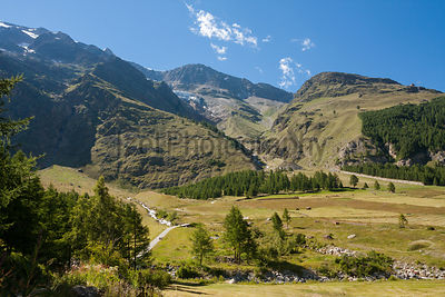 Saas Fee's alpine meadows at the base of their 4000 metre peaks in the Alps.