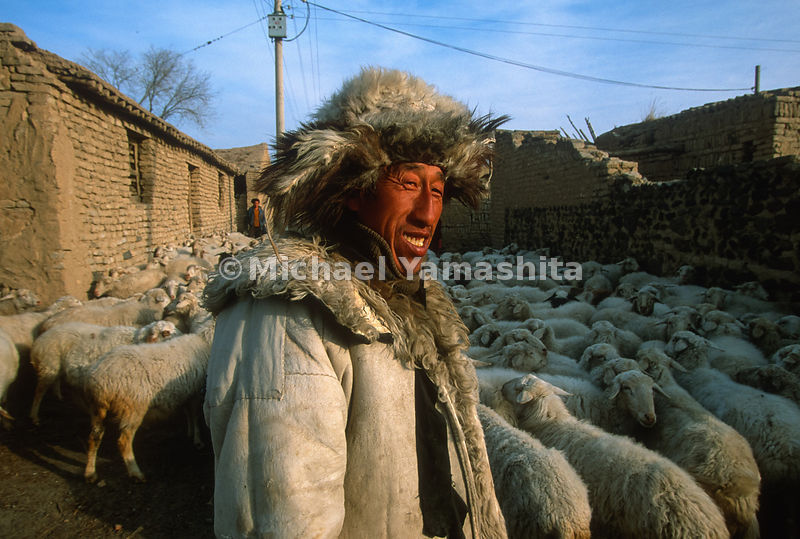 Village shepherd takes the flock on daily outing. Ninglu, China