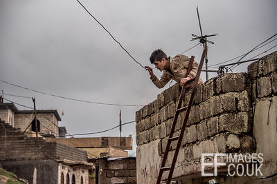 Young Man Using Ladder Tactics In A Firework Battle In Akre