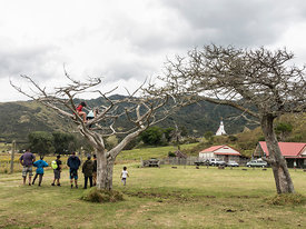Pawarenga on the 31rst of December  spots day - a day of social gathering for the Maori community. It is a remote place witho...
