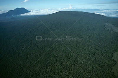 Aerial view of tropical rainforest established on old lava flow of Nyiragongo volcano, Virunga NP, Democratic Republic of Con...