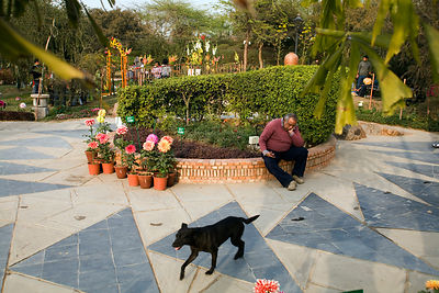 India - Delhi - A man sleeps at the Annual Garden Festival at the Garden of the Five Senses