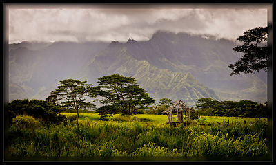 110731_Kauai-000382-Edit_PD